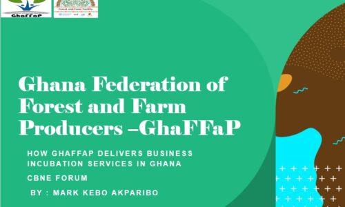 GhaFFaP Business Incubation Ghana CBNE Forum