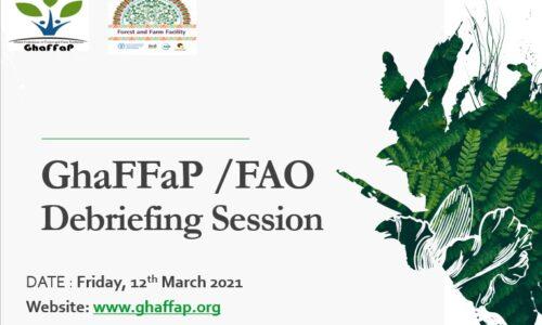 GhaFFaP FAO Debriefing Session March 2021+ek_08-03-2021(1)