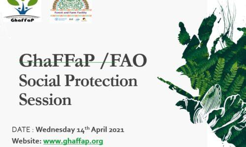 GhaFFaP FAO Social Protection Session 14-04-21